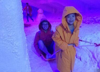 一对游客父子正在玩雪橇