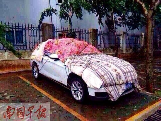 台风天气,停在室外的车辆应选择相对空旷的高地。资料图片