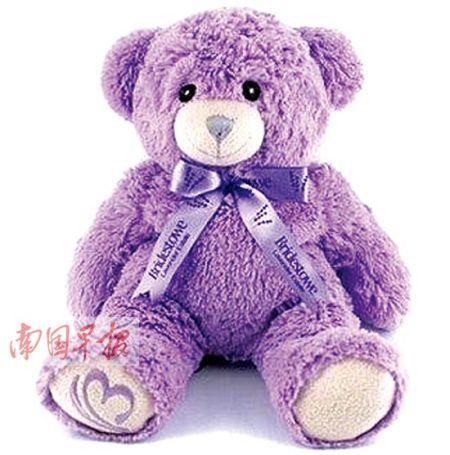 风靡市场的澳大利亚薰衣草小熊。