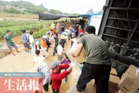 志愿者们齐心协力将打包好的茄子装运上车