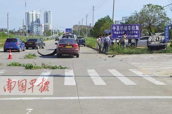 考试路段发生的一起教练车和私家车相撞的交通事故。 合浦交警大队供图