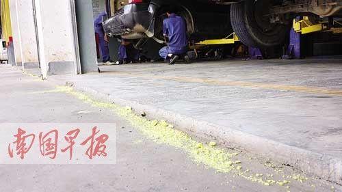 为防蛇入侵,工人们在车间门口撒下雄黄。图片来源:南国早报