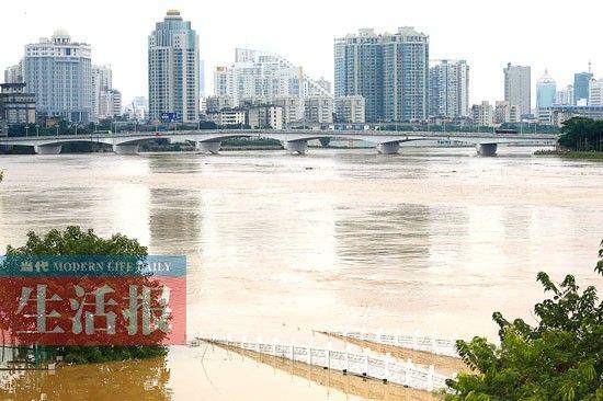 邕江边的不少地方被洪水淹没。