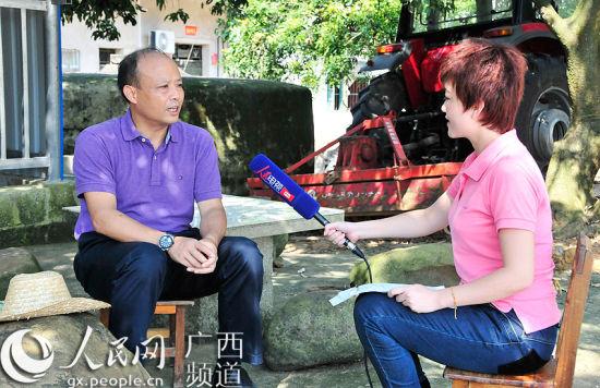 广西宁明县委书记接受采访