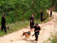 2000余名警民连夜搜捕砍人逃犯
