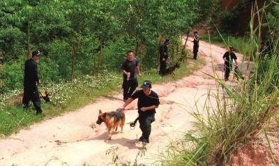 9月26日,干警带着警犬在搜寻犯罪嫌疑人。新华社发