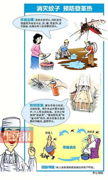 登革热的预防与传播