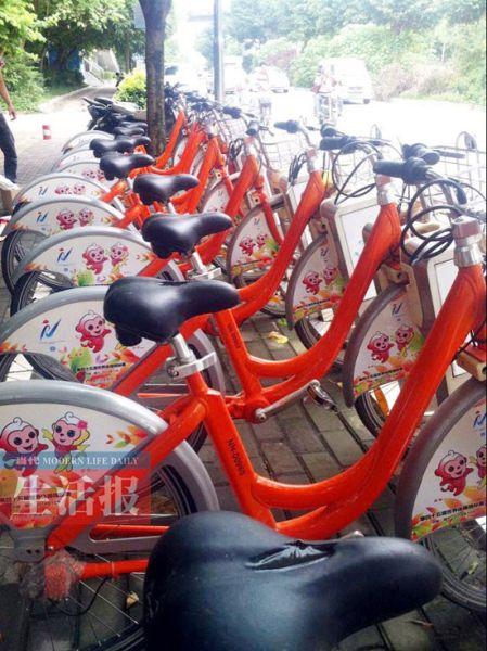 """""""南南""""、""""宁宁""""出现在限量版的公共自行车上。丽邕公司供图"""