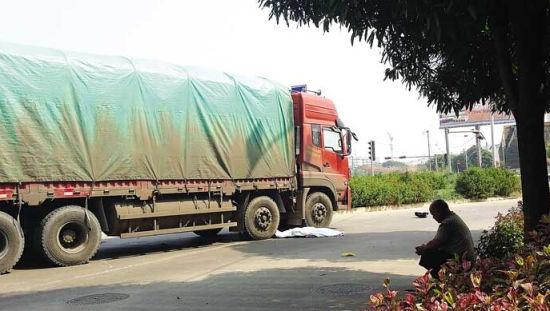货车撞上电动车,车手当场死亡现场。 南国早报记者 周伟武摄
