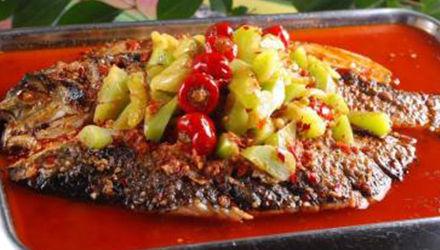 泡椒酸菜烤鱼