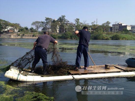 22日下午,渔政站工作人员在宁远河流域捕捞地笼