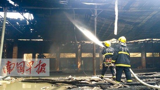消防官兵正在大棚内灭火。