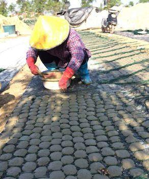 工人赶制培育蚝苗的水泥饼。新华社记者熊红明摄