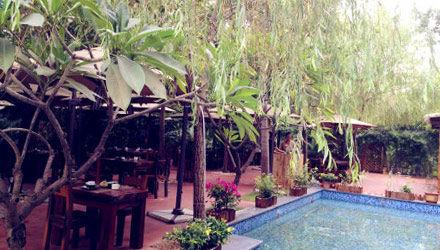 雅庄花园餐厅环境
