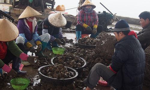 珍珠湾村民正在进行采珠作业 图:卢晓燕