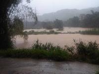 台风中心位于河池罗城县最大风力7级 多地遭暴雨袭击
