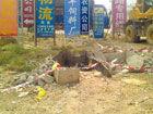 五一路部分垃圾池被砸坏居委会将修复(图)