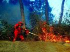 梧州山林火灾:消防直升机往返20次吊水灭火(图)